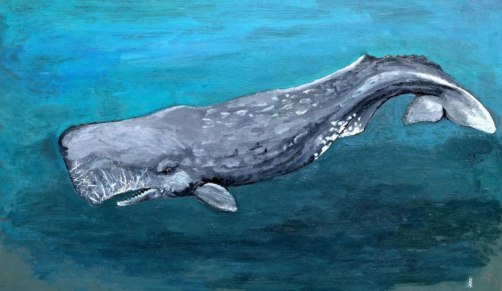 Bazooka reccomend Draw sperm whale