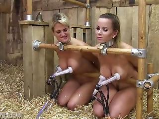 Wild bondage slave sex coeds