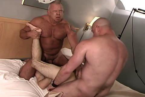 Porn gay bear solo
