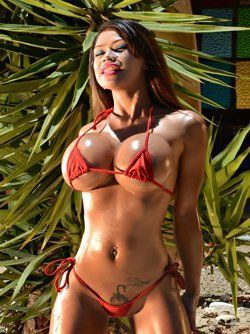 best of Sexy bitches Hot bikini girls nude